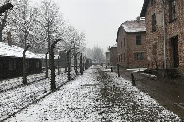 Auschwitz- Conhecendo um Campo de Concentração